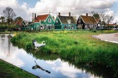 Authentische Zaandam-Mühlen und traditionelle vibrierende Häuser auf dem Wasserkanal in Zaanstad-Dorf, die Niederlande Lizenzfreie Stockfotografie