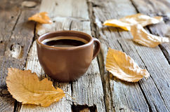Authum morning coffee cup Stock Photography