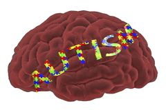 Autism awareness and autistic disorders concept. 3D illustration. Human brain and autism word made of jigsaw puzzles Royalty Free Stock Images