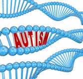 Autism 3d Word DNA Genes Disorder Brain Learning Condition. Autism 3d word in dna strand genes for hereditary cause of the learning disorder or brain condition Royalty Free Stock Image