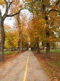 Autmn в парке Стоковая Фотография RF