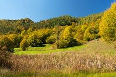 Autmn beautiful landscape. Autumn beautiful landscape near Troyan, Bulgaria Royalty Free Stock Photo