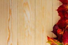 Autmn-Blätter auf hölzernem Hintergrund lizenzfreies stockbild