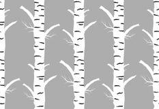 Autmn da árvore de vidoeiro Teste padrão sem emenda Imagem de Stock Royalty Free