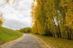 Autmn en el parque Imagen de archivo libre de regalías