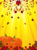 Autmn flourish and pumpkins Royalty Free Stock Photos