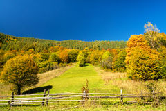 Autmn piękny krajobraz Obraz Royalty Free