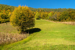Autmn piękny krajobraz Fotografia Royalty Free