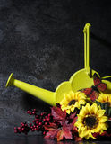 Autmn todavía que fija vida con la regadera amarilla Foto de archivo libre de regalías