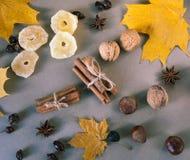 Autmn wciąż życie Ananasy z pikantność Selekcyjna ostrość, odgórny widok Obrazy Royalty Free