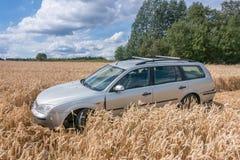 Auto auf dem Gebiet Lizenzfreie Stockfotografie