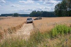 Auto auf dem Gebiet Lizenzfreie Stockbilder