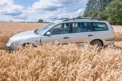Auto auf dem Gebiet Stockfotografie