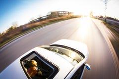 Auto auf der Straße Lizenzfreies Stockfoto