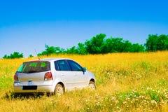 Auto auf Wiese Lizenzfreie Stockfotos