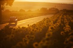 Auto bei Sonnenuntergang stockfotos
