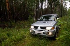 Auto in bos royalty-vrije stock afbeeldingen