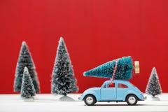 Auto, das einen Weihnachtsbaum transportiert Lizenzfreie Stockbilder