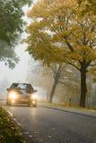 Auto in de herfst Stock Afbeelding
