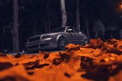 Auto in de herfstnacht Royalty-vrije Stock Foto