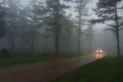 Auto in der Landstraße mit Nebel und niedriger Sicht lizenzfreie stockfotos