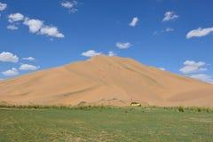 Auto in der Wüste Lizenzfreies Stockfoto