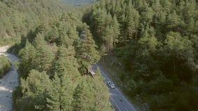Auto die zich op weg onder groene bossen bewegen Het luchtmeningsauto drijven op in de voorsteden stock video
