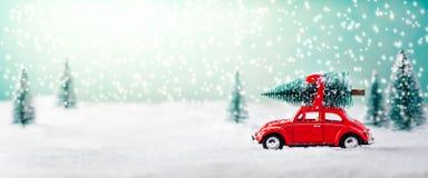 Auto Dragende Kerstboom stock fotografie