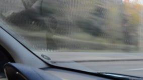 Auto-Durchläufe durch Tor stock video