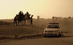 Auto en Arabieren op kamelen in de woestijn van Egypte stock afbeelding