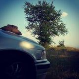 Auto en hout Royalty-vrije Stock Foto
