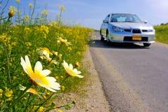 Auto en madeliefjes op de weg Stock Fotografie