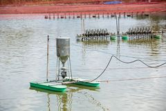 Auto feeder machine floating on the aquaculture pond. Autometic feeder or Auto feed at earthen pond in Aquaculture farm.  stock image