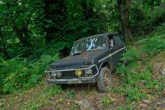 Auto in forrest Lizenzfreies Stockfoto