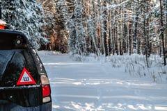 Auto in het de winterbos stock fotografie