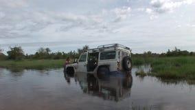 Auto het drijven de natte safari van Afrika van het gebiedsland stock videobeelden