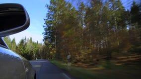 Auto het drijven op een straat in de herfst stock video