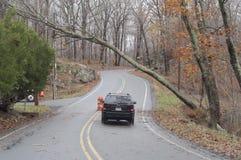 Auto Hurrikan-Sandy-A, das unter einen Baum überschreitet lizenzfreies stockfoto