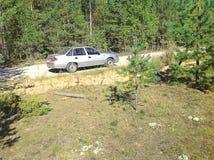 Auto im Holz Stockfotos