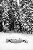 Auto im Schnee Stockfotos