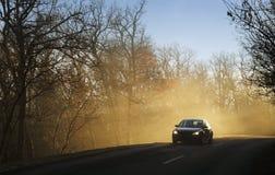 Auto im Wald Lizenzfreies Stockbild