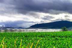 Auto irrigation systems on french rural fields. Agricultural con Royalty Free Stock Image