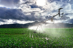 Auto irrigation systems on french rural fields. Agricultural con Stock Images