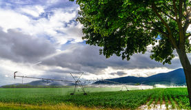 Auto irrigation systems on french rural fields. Agricultural con Royalty Free Stock Photography