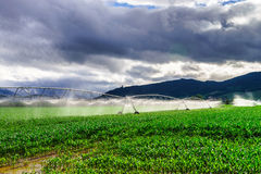 Auto irrigation systems on french rural fields. Agricultural con Stock Photos