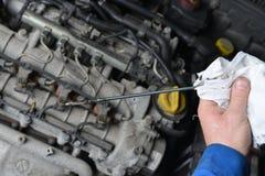 Auto mekaniker som kontrollerar jämn olja royaltyfria bilder