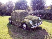 Auto met gras, park Gardaland omhoog wordt behandeld die stock foto's