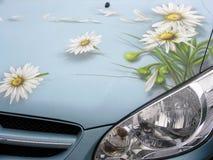 Auto mit Betragblumen Stockfotos