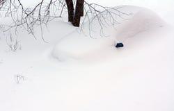 Auto onder sneeuwbank Stock Foto's
