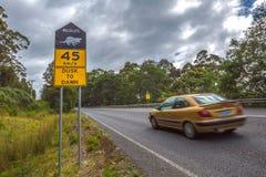 Auto op de weg met maximum snelheid voor Tasmaanse Duivel Stock Afbeeldingen